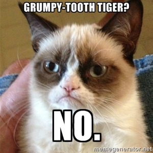 grumpy tooth tiger