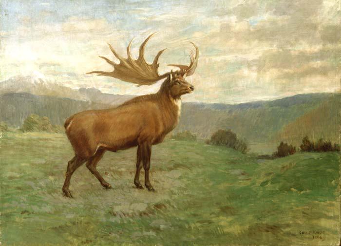 Irish Elk: Awesome Extinct Animals, Pt 2 – Jon Farrow