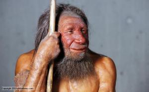 I can haz Elk steak? Image source: http://www.bbc.co.uk/nature/life/Neanderthal