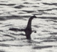 Not a sea monster, 1934.  Photo by Robert Wilson, published in the Daily Mail