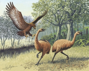 The giant, moa-hunting Haast's Eagle of New Zealand.  Almost as scary as terror birds.